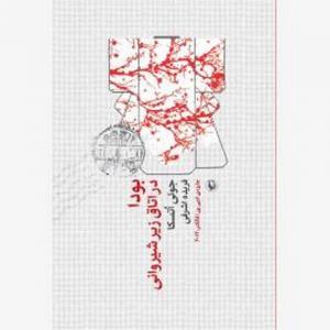 بودا در اتاق زیر شیروانی اثر جولی اتسکا مترجم فریده اشرفی